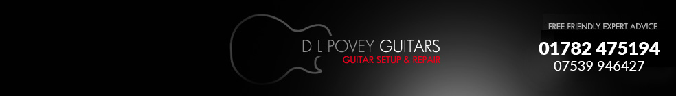 DL Povey Guitars